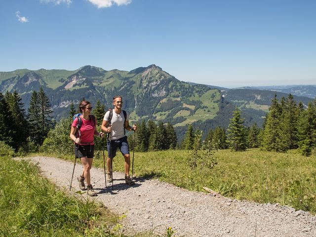 wandern bergsteigen genusswandern im bregenzerwald gesundhotel bad reuthe. Black Bedroom Furniture Sets. Home Design Ideas